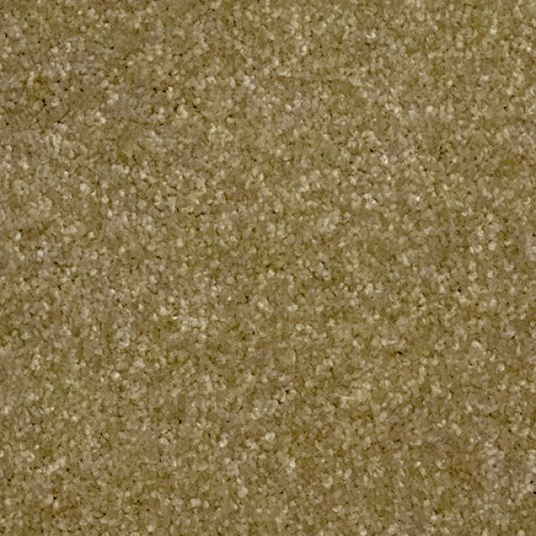 Regency Carefree Trident Pastelle Carpets And More Ltd