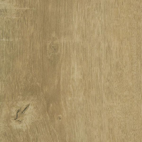 Oiled French Oak